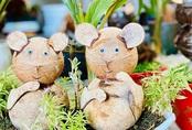 Dừa bonsai hình chuột đắt khách