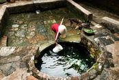 Tại sao nhiều nhà trữ đầy nước trước giao thừa?