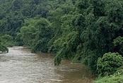 3 mẹ con tử vong dưới sông sau tin nhắn xin lỗi