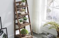 Kệ lưu trữ hình thang độc đáo cực kì thích hợp với những căn hộ có diện tích nhỏ