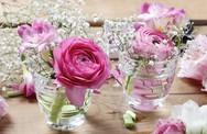 4 mẹo cắm hoa siêu dễ để mùa xuân luôn bừng nở trong nhà bạn