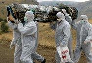 Thêm 56 người chết vì Ebola trong vùng dịch