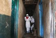 """CHDC Congo có hơn 10 người chết vì bệnh """"giống ebola"""""""