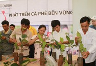 Gia tăng số lượng nông dân Việt sản xuất cà phê bền vững