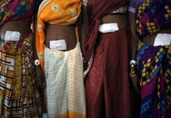 Hãi hùng thuốc dùng cho triệt sản ở Ấn Độ có chứa bả chuột