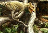 """Có khủng long """"tý hon"""" trên thế giới"""