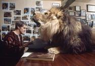 Gia đình nữ diễn viên 40 năm sống chung với một con sư tử