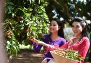 Người đẹp Hoa hậu Việt Nam 2014 nô đùa trong nắng gió phương Nam
