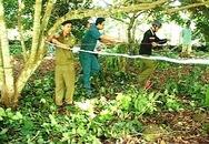 Thanh niên chết trong tư thế treo cổ ở rẫy chôm chôm
