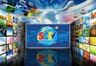 SCTV luôn đồng hành cùng khán giả