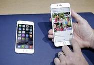 Người dùng iPhone 6 quên bẵng iPad