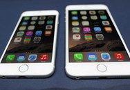 Xôn xao vụ lừa đảo tiền mua iphone 30 tỷ đồng