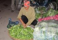 Giật mình quy trình biến rau Trung Quốc thành rau nội