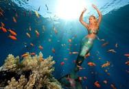 """Khám phá cuộc sống của """"nàng tiên cá"""" ngoài đời thực cực nổi tiếng trên mạng xã hội"""