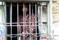 13 năm con trai bị mẹ đẻ nhốt trong chuồng gà