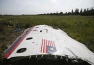 """Hà Lan tuyên bố MH17 """"trúng tên lửa Buk"""""""