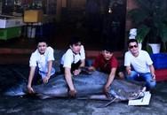 'Thủy quái' dài gần 2 mét từ Campuchia về VN