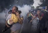 Bức ảnh ông bố nhập cư ôm con chạy nạn gây nhói tim