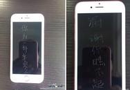 Chàng trai mua 9 iPhone 6S khắc chữ trả thù người yêu cũ