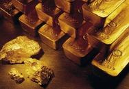 Nuốt 400 g vàng thỏi vào bụng để buôn lậu
