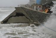 Cận cảnh hoang tàn sau siêu bão Koppu