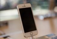 iPhone 5S mất giá thành hàng phổ thông