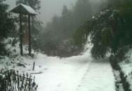 Thanh niên dựng chuyện Sapa có tuyết rơi và cái kết đắng