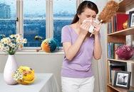 Hỏi - đáp thuốc trị viêm mũi dị ứng