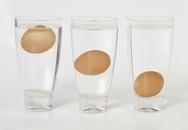 Phân biệt trứng mới trong nháy mắt