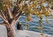 Chùm ảnh: Paris tươi đẹp đã trở lại sau cơn giông tố đêm 13/11