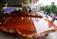 Phản gỗ xuất xứ châu Phi giá gần nửa tỷ tại hội chợ Tết