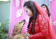 Chú chó khóc ướt mắt khi cô chủ 'theo chồng về dinh'