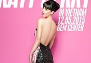 Nữ ca sĩ Katy Perry đến Việt Nam không phải để hát