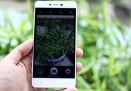 3 smartphone giá dưới ba triệu đồng vừa ra mắt