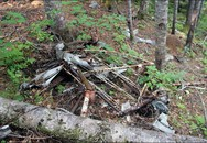 Phát hiện hài cốt nạn nhân, xác máy bay mất tích cách đây 80 năm