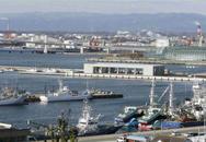 Sự hồi sinh thần kỳ của Nhật Bản sau thảm họa động đất sóng thần 2011