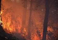 Cháy lớn, hàng ngàn người tham gia cứu rừng ở Nghệ An