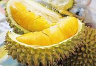 Những tác dụng phụ bạn cần biết khi ăn nhiều sầu riêng