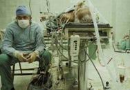 Những bức ảnh về bác sĩ gây xúc động mạnh