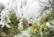 Băng giá phủ trắng vùng núi Lào Cai, Cao Bằng