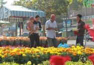 Rộn ràng chợ hoa Xuân Long An
