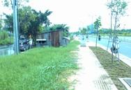"""Nguy cơ bùng phát dịch sốt xuất huyết tại TPHCM: Gia tăng điểm """"nóng"""" vì đường mới, nhà mới"""