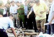 Xót xa với hơn 3 tấn ngà voi, sừng tê giác sẽ bị hủy