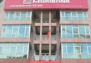 """Lãnh đạo chi nhánh Agribank chỉ rõ """"tội"""" nhân viên"""
