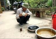 Huyện Hạ Hòa (Phú Thọ): Dân hoang mang vì nước lạ