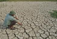 Nông dân quắt quay vì hạn hán