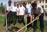 Chuẩn Đô đốc Hải quân trồng cây phong ba tại Hương Sơn, Hà Tĩnh