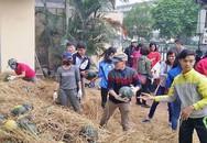 Chung tay giúp nông dân miền Trung thoát cảnh bị ép giá dưa hấu