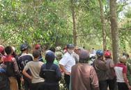 Hàng trăm người kéo đến xem xác người phân hủy trong rừng