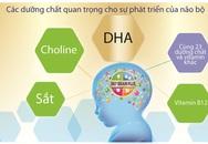 Nguồn dinh dưỡng đúng cho sự phát triển trí não toàn diện của bé